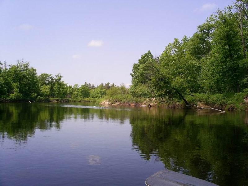левый берег химки рыбалка